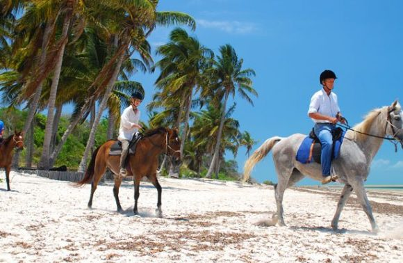Romantic Adventure: Zanzibar Horseback Riding