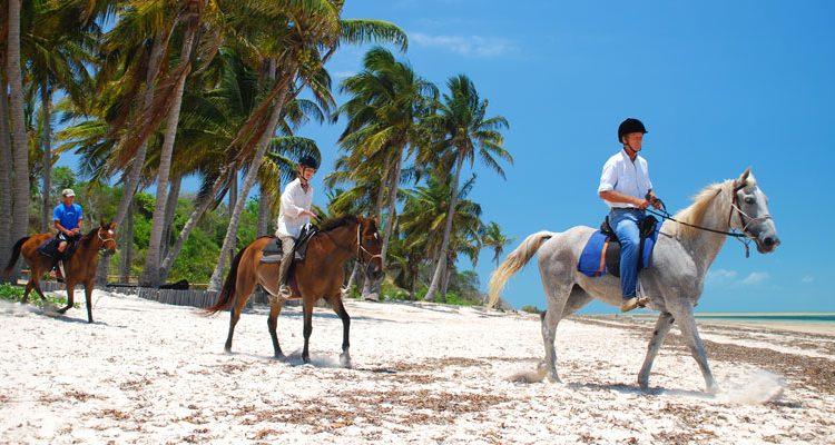 Romantic Adventure: Zanzibar Horseback Riding