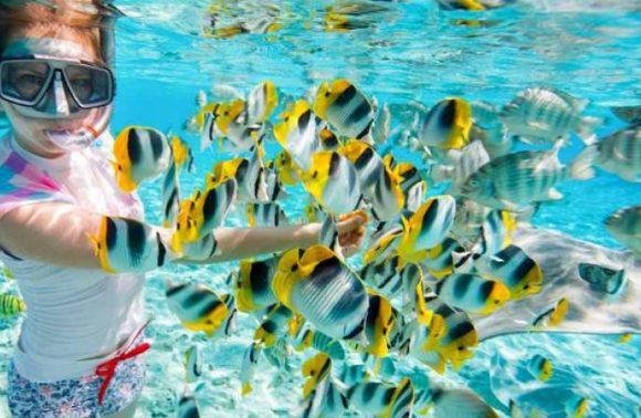 Jambiani Snorkel Adventure