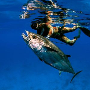 Zanzibar East Side Spearfishing