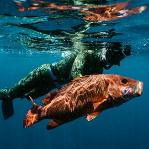 Spearfishing from Paje East Coast Zanzibar