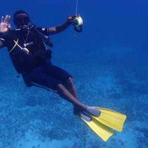 Half-Day Discover Freediving in Paje Beach